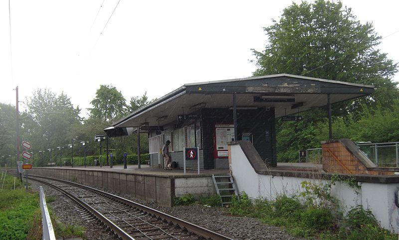 Støv på hjernen location Bernstorffsvej Station